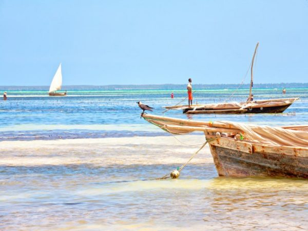 offerta zanzibar vacanza waridi beach